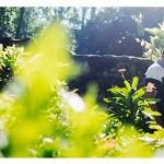Ensaio Fotográfico | 1 ano guilherme